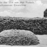 almenhausen.jpg