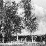 cmborzymy01-1940.jpg