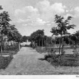 stadt-friedhof3.jpg