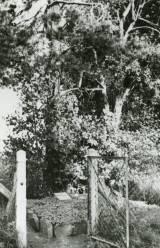 ehrenfriedhof_billau_zbyluty.jpg