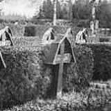 ehrenfriedhof02.jpg