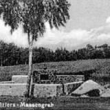 sauberbaum1.jpg