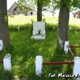 Mogiła zbiorowa lub cmentarz żołnierzy WP.