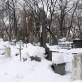 Kijów. Cmentarz Bajkowy - kwatera wojenna 1920 r.